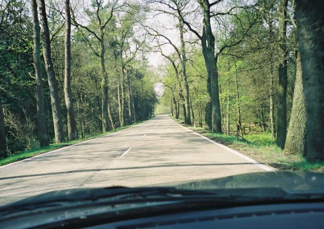 The country roads around Lelystad, north Holland