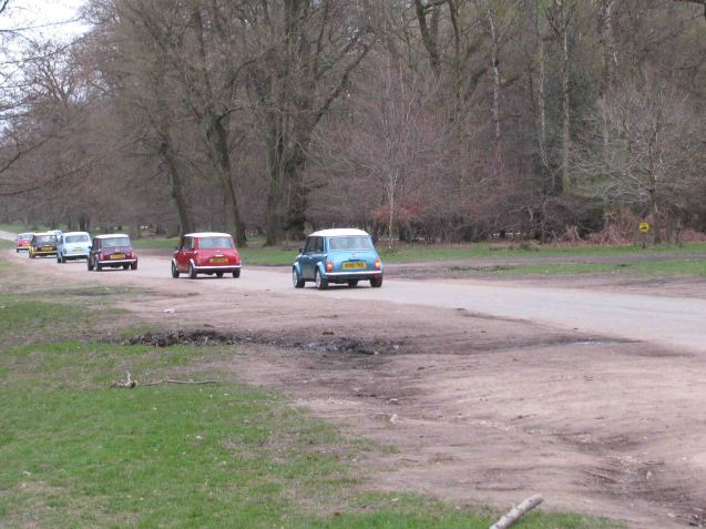 Cute little bugs: Mini Rally in Ashrdige, Hertfordshire. Yesterday