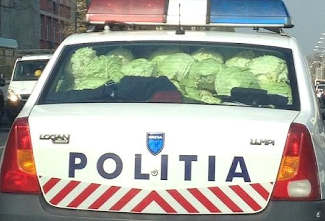 Police in Bucharest confiscated cabbage from an illegal seller yesterday and had no choice but to transport the contraband themselves.