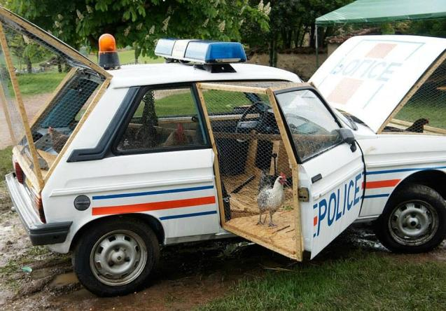 La voiture de police poulailleri: artist Benedetto Bufalino transformed this former police car from the Loire into a hen coop, the aim being to bridge the gap between functional objects and sculpture.