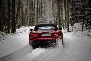 Jaguar On Ice: more later.