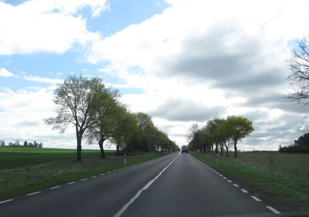 Tree lined roads, always a good sign.