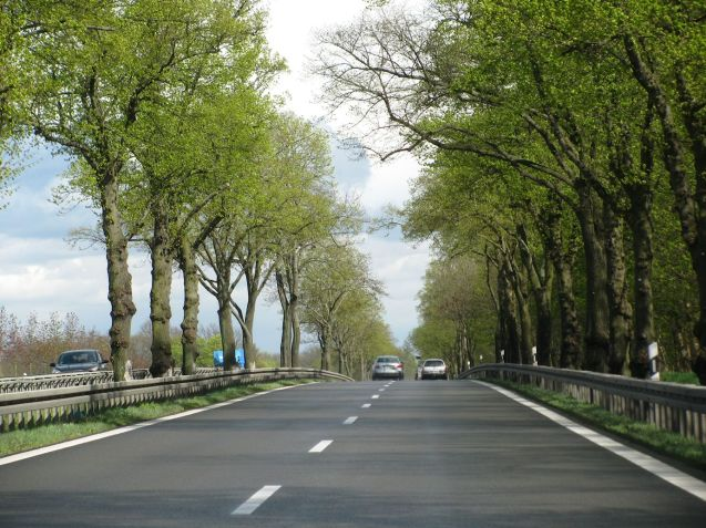 The A10 ring road Berlin. Re-surfaced original Hitlerbahn, note no hard shoulder, but the planting is original, even including trees in the centre line.
