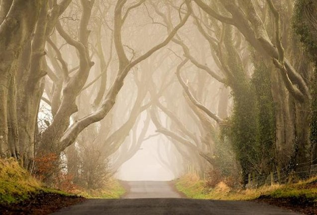 Game of Thrones road, northern Ireland. More later.