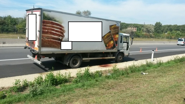 The truck with Hyza logos blanked out by Austria police. Photo