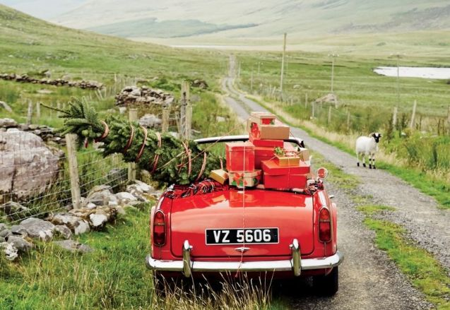 Merry Christmas! Wishing all readers a fantastic day, whatever you may be doing. Photo: pinched from this winter's J Crew catalogue, shot on Ireland's 1500 mile tip-to-toe Wild Atlantic Way. 'The landscape was so green it felt like a movie set,' they said. See more at WildAtlanticWay.com